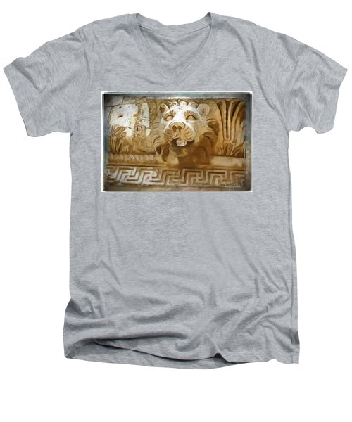 Do-00313 Lion Water Feature Men's V-Neck T-Shirt