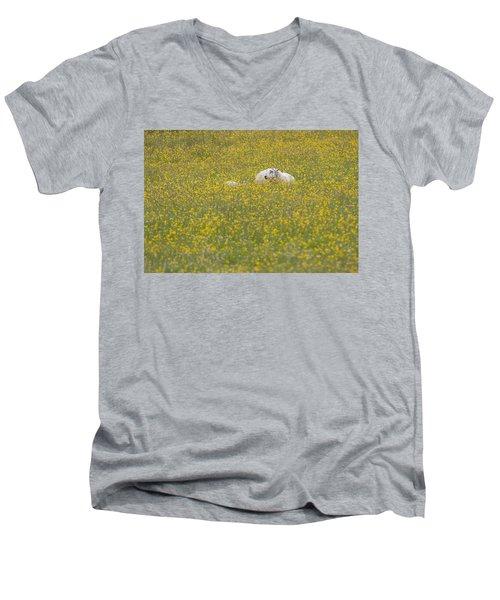 Do Ewe Like Buttercups? Men's V-Neck T-Shirt