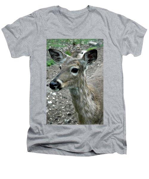 Men's V-Neck T-Shirt featuring the photograph Doe Eyes by LeeAnn McLaneGoetz McLaneGoetzStudioLLCcom
