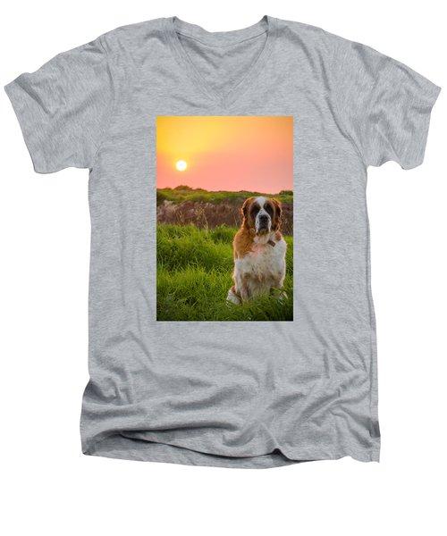 Dog And Sunset Men's V-Neck T-Shirt