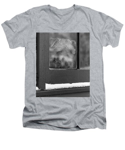 Doggy In The Window Men's V-Neck T-Shirt