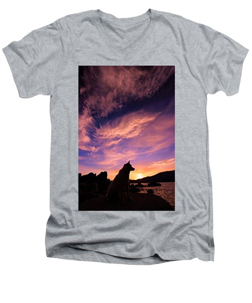Dogs Dream Too Men's V-Neck T-Shirt by Sean Sarsfield