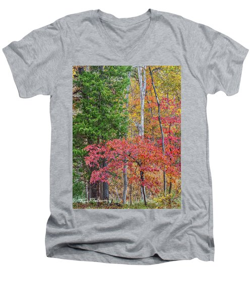 Dogwood And Cedar Men's V-Neck T-Shirt