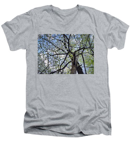 Dogwood Canopy Men's V-Neck T-Shirt