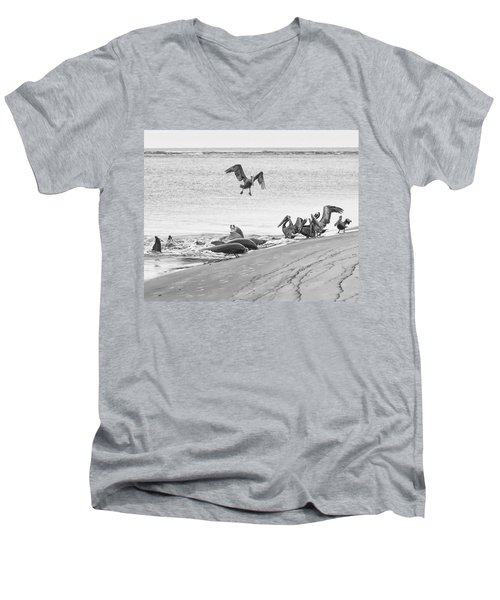 Dolphin And Pelican Party Men's V-Neck T-Shirt