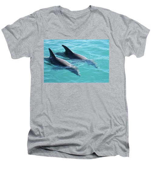 Dolphins Men's V-Neck T-Shirt