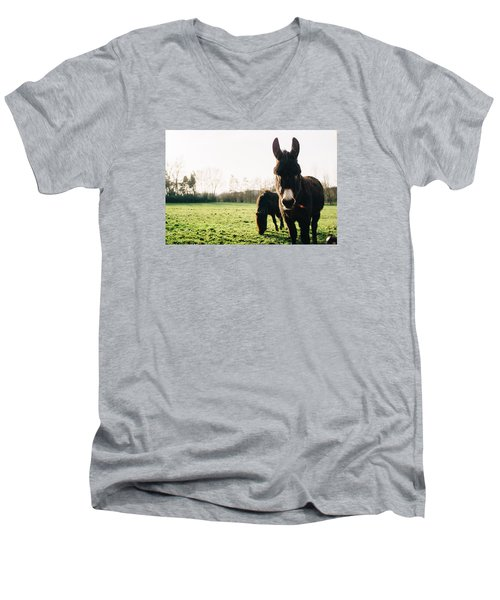 Donkey And Pony Men's V-Neck T-Shirt by Pati Photography