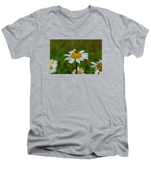 Men's V-Neck T-Shirt featuring the photograph Don't Bug Me by Lew Davis