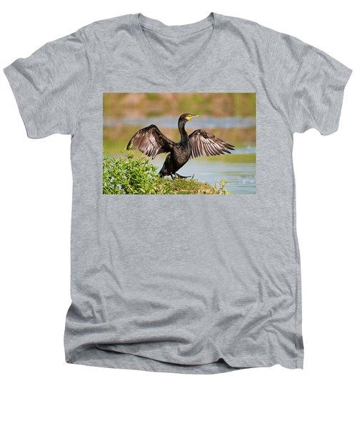 Double-crested Cormorant Men's V-Neck T-Shirt