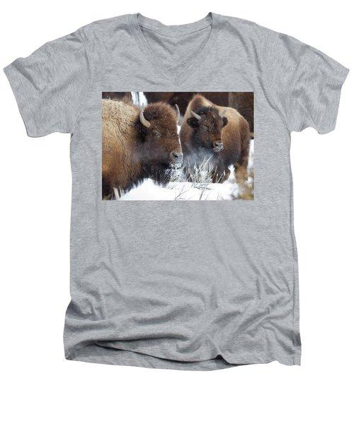 Double Vision Men's V-Neck T-Shirt