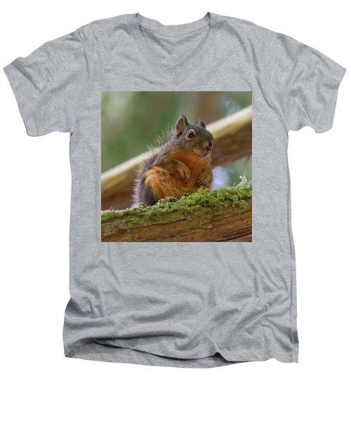 Douglas Squirrel Men's V-Neck T-Shirt