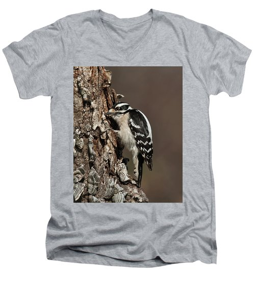 Downy Woodpecker's Secret Stash Men's V-Neck T-Shirt