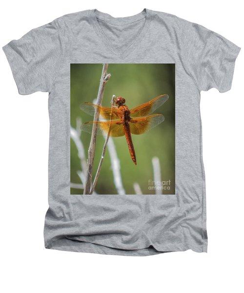 Dragonfly 10 Men's V-Neck T-Shirt
