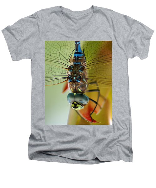 Dragonfly In Thought Men's V-Neck T-Shirt
