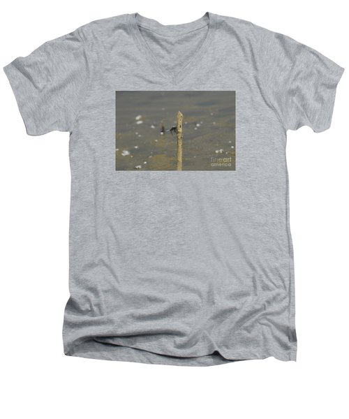 Dragonfly On Old Wood Men's V-Neck T-Shirt