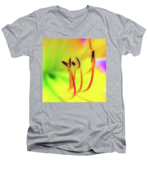 Dreamy Daylily Men's V-Neck T-Shirt