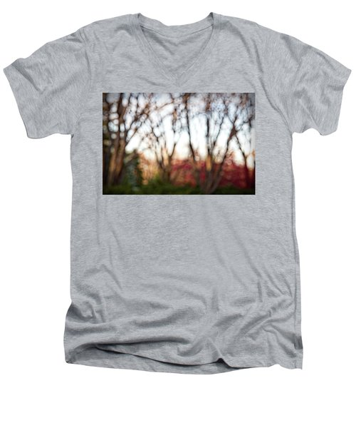 Men's V-Neck T-Shirt featuring the photograph Dreamy Fall Colors by Susan Stone