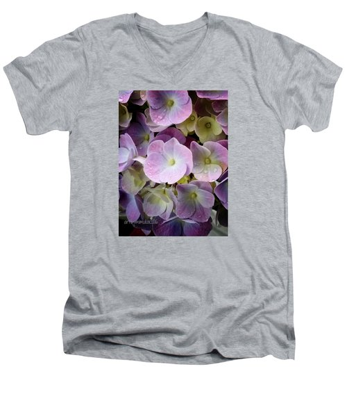 Men's V-Neck T-Shirt featuring the photograph Dreamy Hydrangea by Mimulux patricia no No