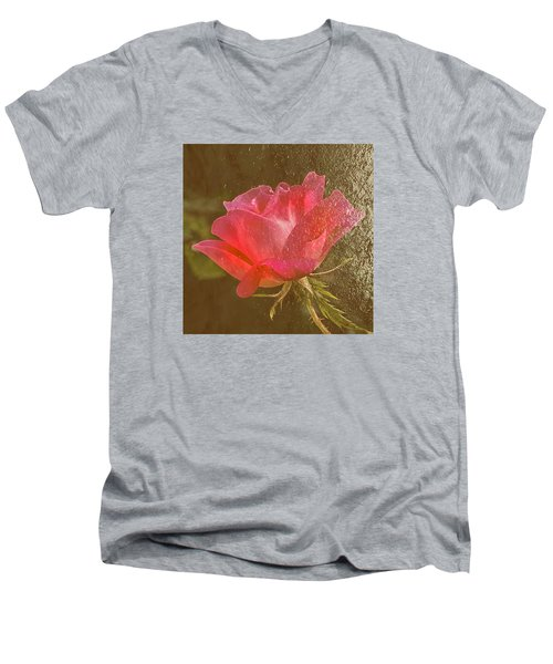 Men's V-Neck T-Shirt featuring the photograph Dressed In Gold by Susi Stroud