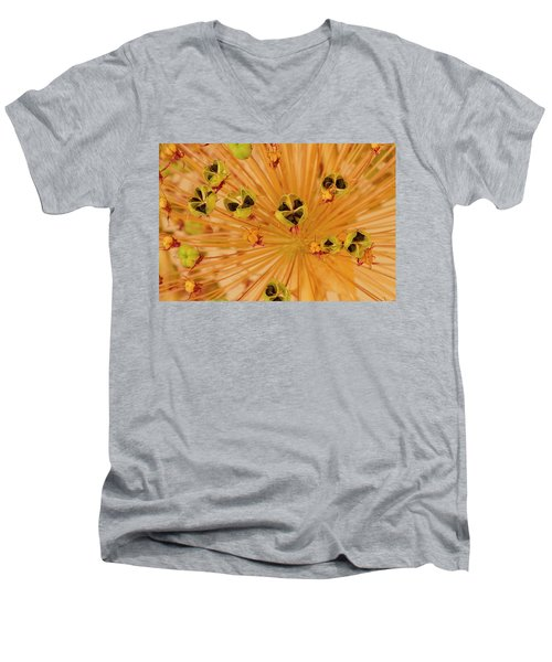 Dried Allium Seed Macro Men's V-Neck T-Shirt