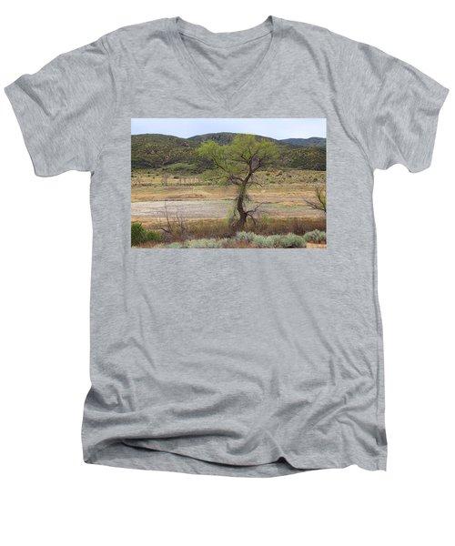 Dried Elizabeth Lake Men's V-Neck T-Shirt
