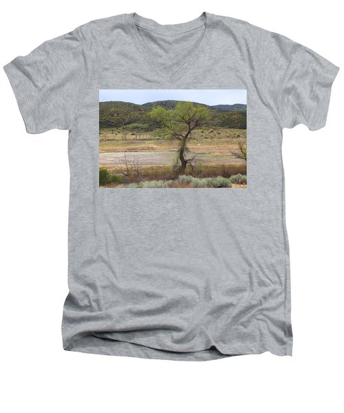 Dried Elizabeth Lake Men's V-Neck T-Shirt