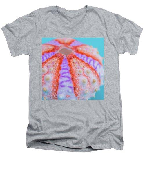 Coastal Dreams Men's V-Neck T-Shirt