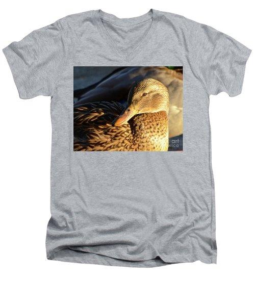 Duck Sunbathing Men's V-Neck T-Shirt
