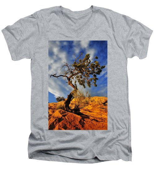 Dusk Dance Men's V-Neck T-Shirt