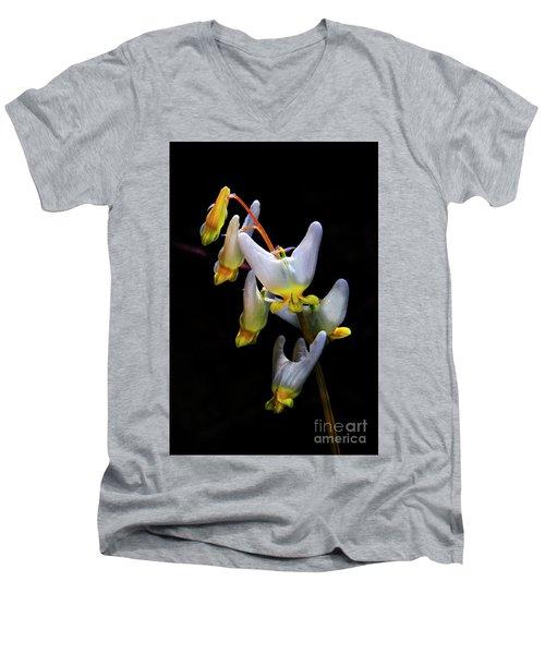 Dutchmans Breeches Men's V-Neck T-Shirt