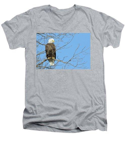 Eagle Men's V-Neck T-Shirt by Brook Burling