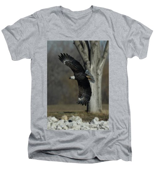Men's V-Neck T-Shirt featuring the photograph Eagle Soaring By Tree by Coby Cooper