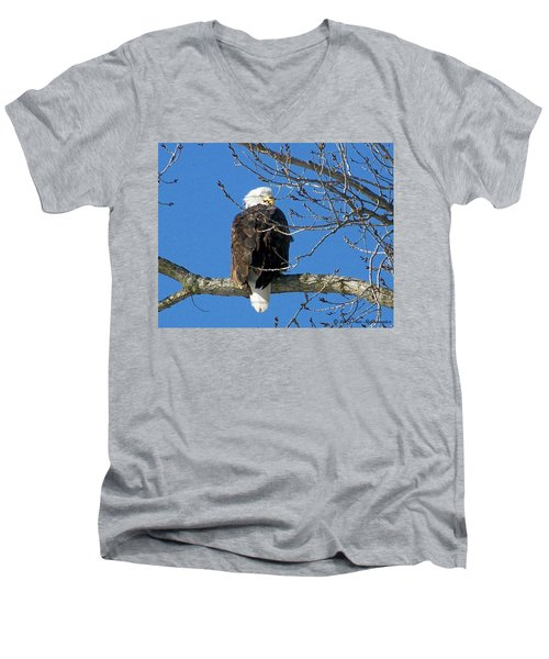 Eagle Watch Men's V-Neck T-Shirt by Sue Stefanowicz
