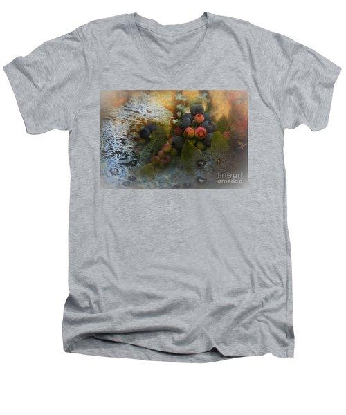 Early Frost Men's V-Neck T-Shirt
