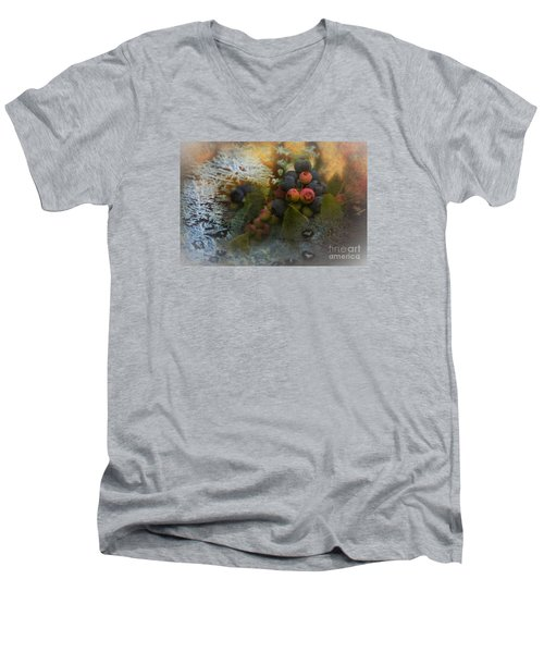 Early Frost Men's V-Neck T-Shirt