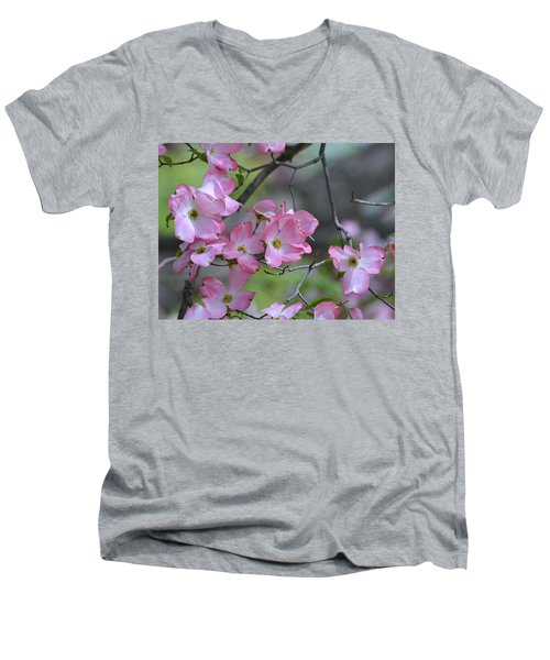 Early Spring Color Men's V-Neck T-Shirt by Kathy Eickenberg