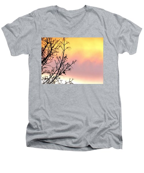 Men's V-Neck T-Shirt featuring the photograph Early Spring Sunset by Will Borden
