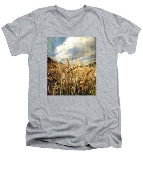 Ears Of Corn Men's V-Neck T-Shirt by Vittorio Chiampan