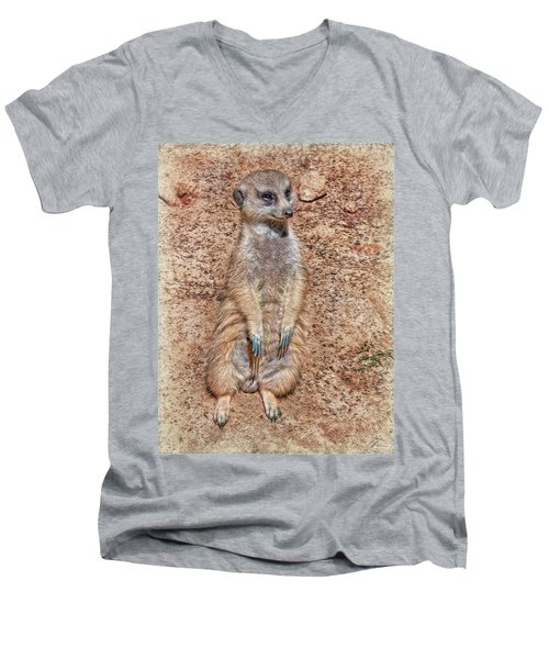 Men's V-Neck T-Shirt featuring the photograph Earth Manikin by Hanny Heim