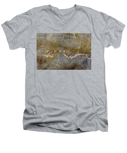 Earth Portrait 000-204 Men's V-Neck T-Shirt