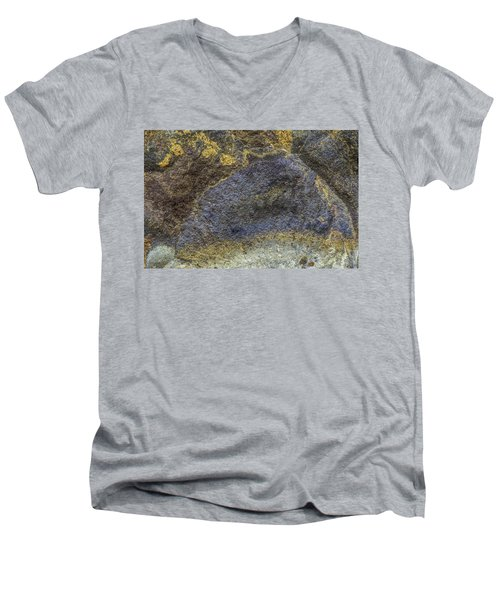 Earth Portrait 001-026 Men's V-Neck T-Shirt