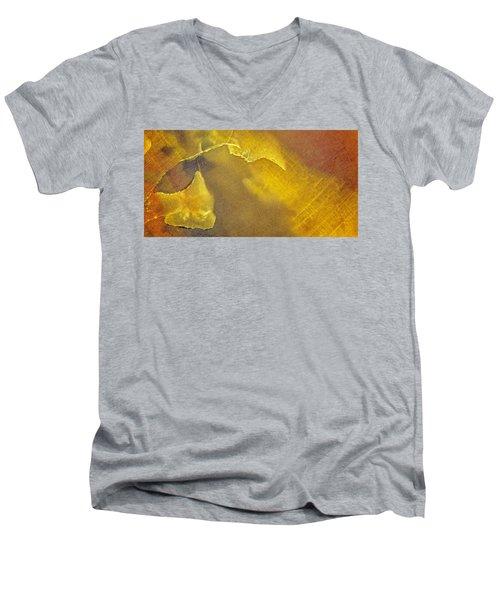 Earth Portrait 001-120 Men's V-Neck T-Shirt