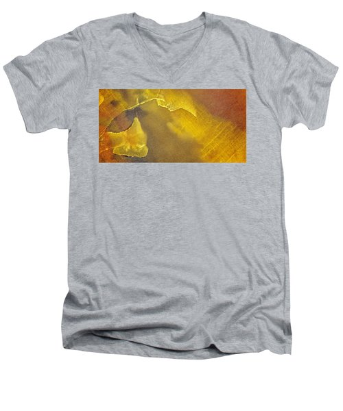 Earth Portrait 001-120 Men's V-Neck T-Shirt