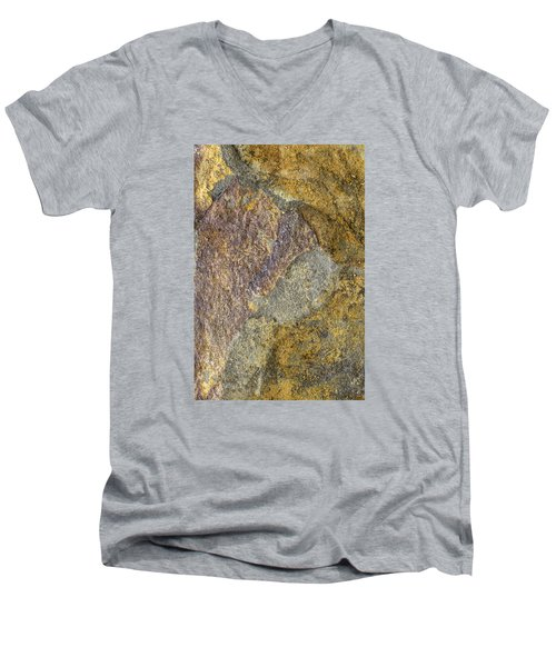 Earth Portrait 011 Men's V-Neck T-Shirt