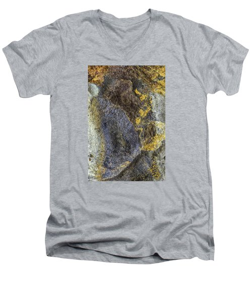 Earth Portrait 012 Men's V-Neck T-Shirt