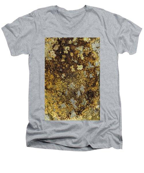 Earth Portrait 015 Men's V-Neck T-Shirt