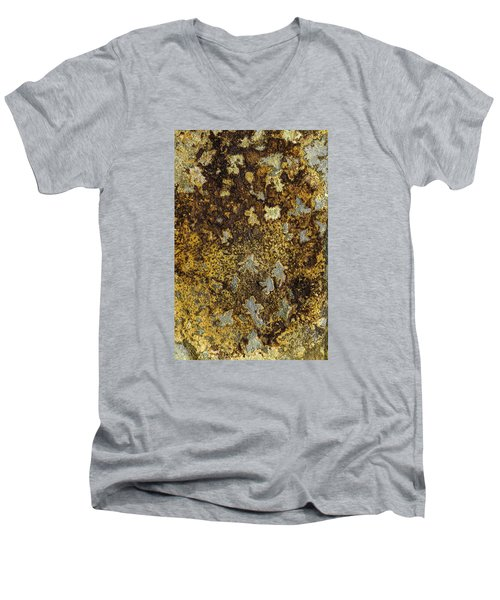 Earth Portrait 015 Men's V-Neck T-Shirt