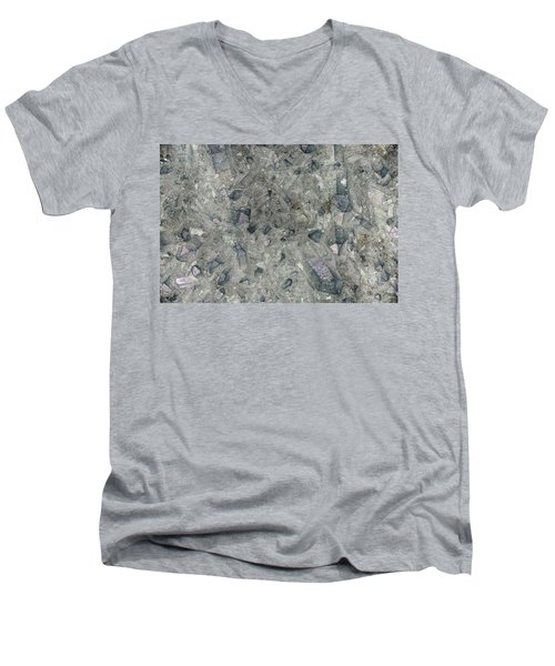 Earth Portrait 158 Men's V-Neck T-Shirt