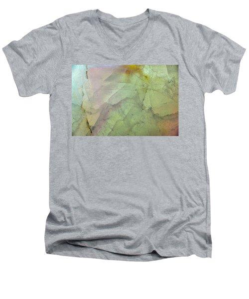 Earth Portrait 284 Men's V-Neck T-Shirt