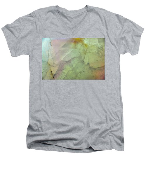 Earth Portrait 284 Men's V-Neck T-Shirt